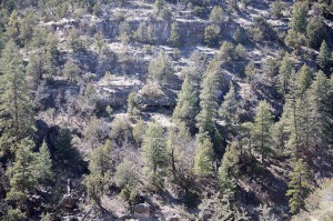 Rooms in Walnut Canyon  002