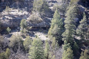 Rooms in Walnut Canyon  003