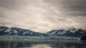 Blog-1496
