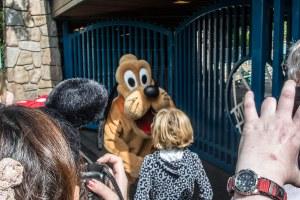 Disneyland DCA 2015-6572