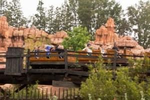 Disneyland DCA 2015-6787