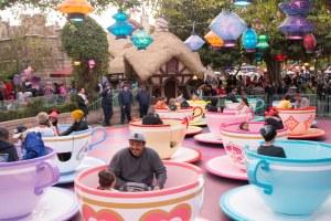 Disneyland DCA 2015-6829